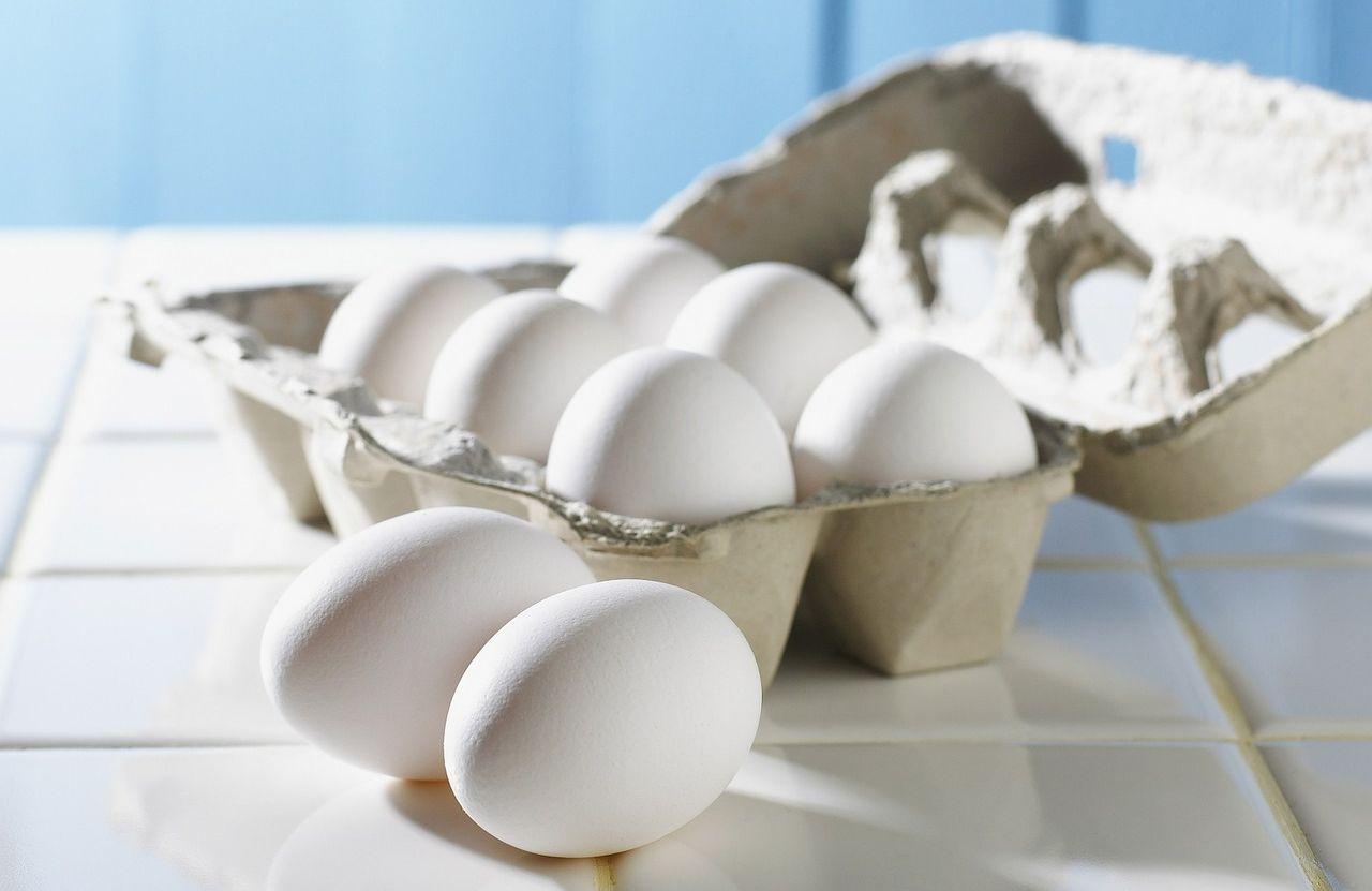Dieta wysokobiałkowa – stosować czy nie?