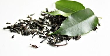 Zielona herbata nie tylko na odchudzanie?
